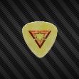 Veritas guitar pick front