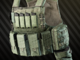ANA Tactical M1 armored rig