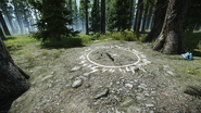 Woods - Cultist circle