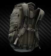 Eberlestock F5 Switchblade backpack (dry earth) back