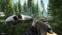 Escape from Tarkov Woods 11