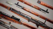 Mosin bolt-action rifles - All variants - closeup