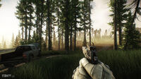 Escape from Tarkov Woods 12
