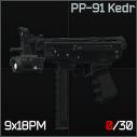 RaiderPP91Kedr.png