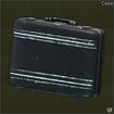 Carbon Case icon.png