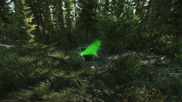 Woods-Showcase-9.png