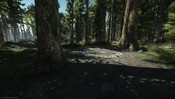 Woods-Showcase-16.png