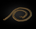 Golden neck chain.png