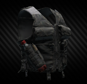 Securityvest.png