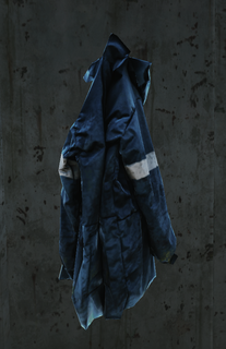 Bluejacketnormal.png