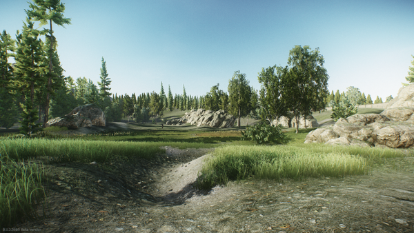 Woods-Showcase-7.png