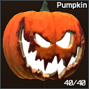 PumpkinHelmetIcon.png