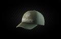 BEAR Baseball cap.png