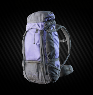 Pilgrim Backpack.png