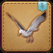FFXIV Gull Minion Patch