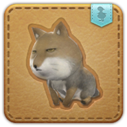 FFXIV Sand Fox Minion Patch