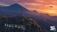 Vinewood PS4