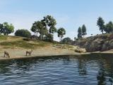Río Zancudo