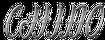 Chino-GTAV-Logo.png