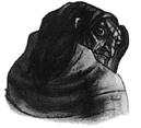 Harry Potter y el cáliz de fuego - Ilustración capítulo 13