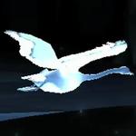 Cisne blanco Patronus.png