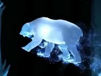 Oso polar Patronus