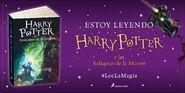 Lee La Magia 7