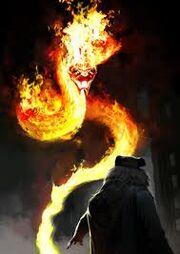 Fuego Endemoniado.jpg