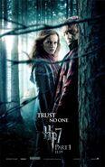 Harry Potter Ron HermioneParte1