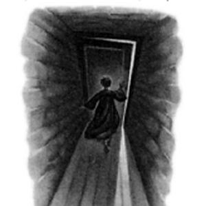 Harry Potter y la Orden del Fénix - Ilustración capítulo 26.png