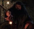Hagrid y su varita.png