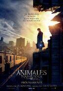 Animales fantásticos y dónde encontrarlos película cartel