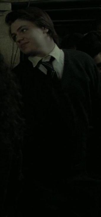 Chico de Ravenclaw no identificado miembro del Ejército de Dumbledore en 1997-1998 (II)