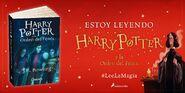 Lee La Magia 5
