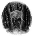 Harry Potter y la cámara secreta - Ilustración capítulo 15