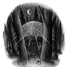 Harry Potter y la cámara secreta - Ilustración capítulo 15.png