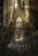 Animales fantásticos y dónde encontrarlos película cartel 2
