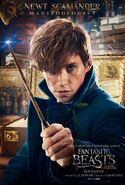 Poster Animales fantásticos Newt