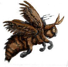 HawkMoth2.jpg