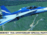 Hasegawa 1/72 00189 CF-188A Hornet '75th Anniversary Special Painting'