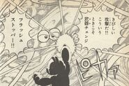 FlashStopper-Ikehara3