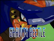 Gravity beetle present