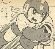 PlacaR-Ikehara
