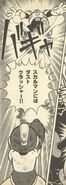 DustCrusher-Ikehara3