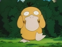 EP049 Psyduck (3).png