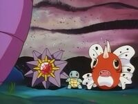 EP061 Seaking Starmie y Squirtle