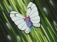 EP008 Butterfree de Ash.jpg