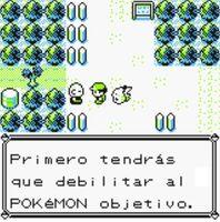 Viejo de Ciudad Verde(segundo intento) respondes si luego de atrapar a rattata