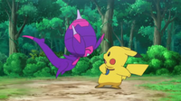 EP1004 Poipole conoce a Pikachu
