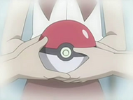 EP516 Poké Ball de Sandshrew